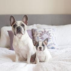 Phoebe&MiniMe.jpg