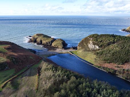 Ynys Y Fydlyn, Anglesey