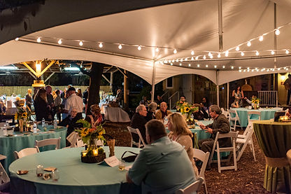 Wine in the Wild 2019- VIP guests enjoying their reserved tables.jpg