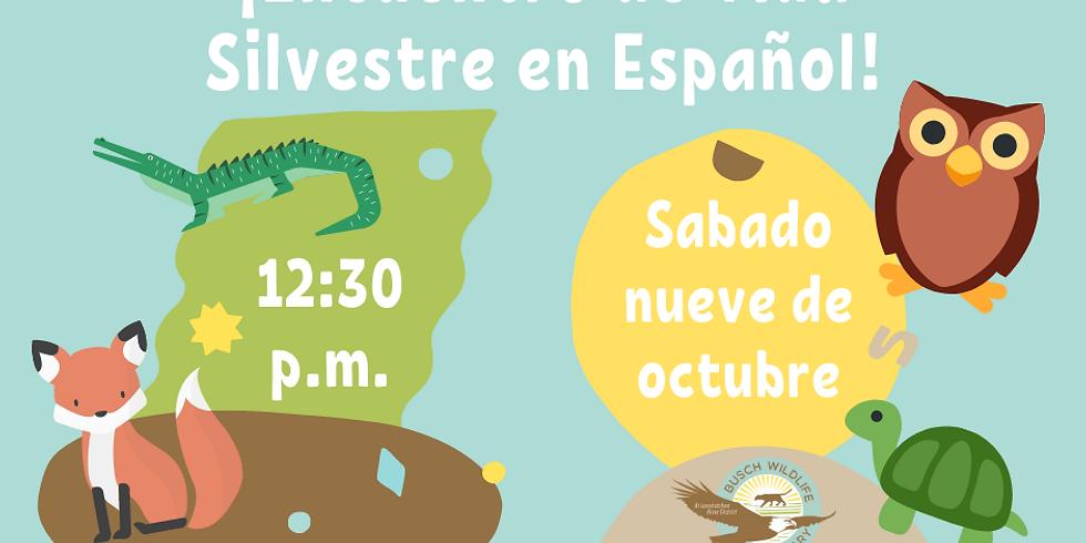 Spanish Wildlife Encounter/Encuentro con la Vida Silvestre