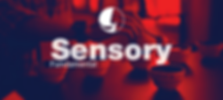 sensoryfun.png