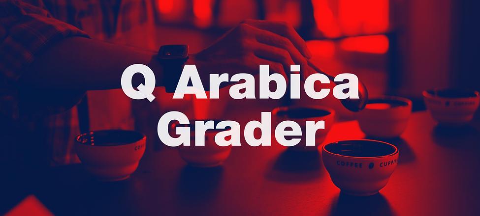 Q arabica grader.png