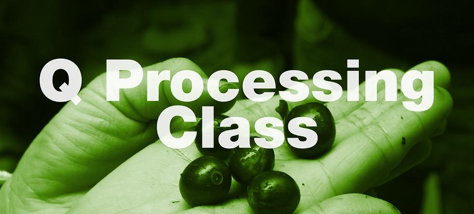 q processing class.png