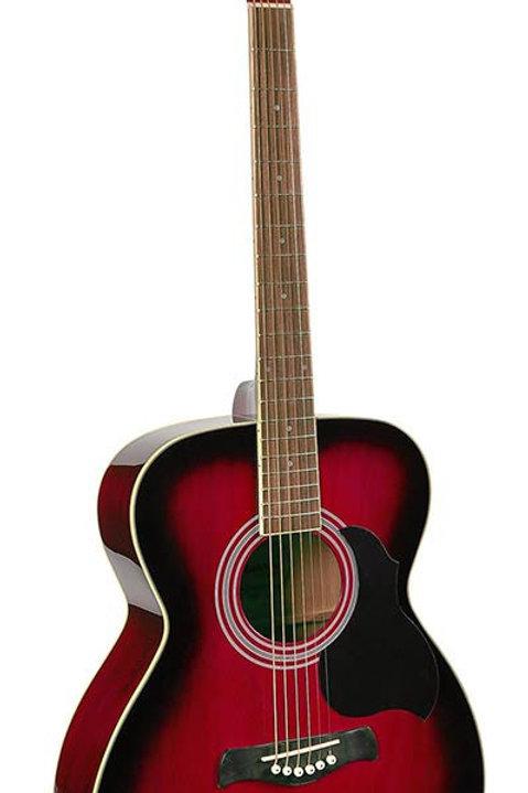 Richwood Artist series Acoustic Guitar