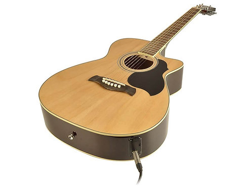 Rich wood auditorium Acoustic Guitar RA-12-CE