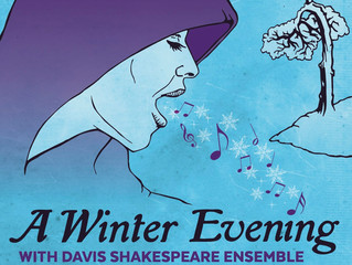 A Winter Evening with DSE
