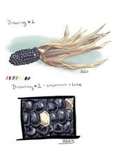 Ancient Corn