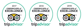 Tripadvisor Certificate of Excellence for wellness day spa in sarasota