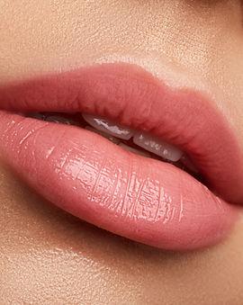 Perfect natural lip makeup. Close up mac