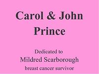 Carol & John Prince logo rec.png