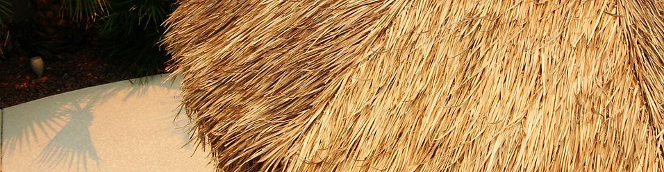 Palm thatch, palapa top, tiki hut, umbrella, shade