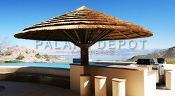 Palapa umbrella over BBQ