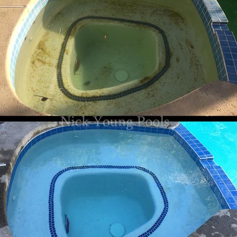 Spa algae treatment