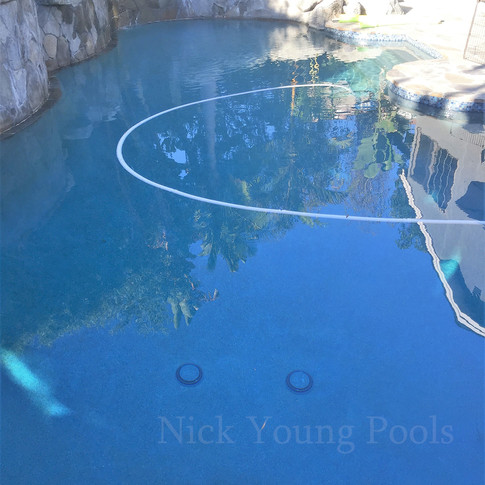 Nature scape pool and spa
