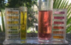Weekly chemical service chlorine and PH test results