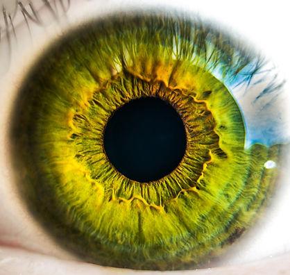 customeye.jpg