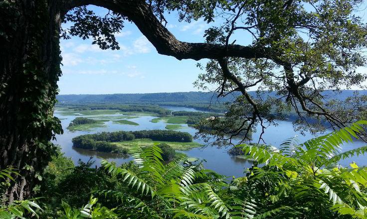 Driftless Area Mississippi River