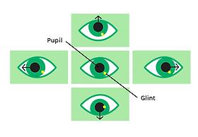 angeladelise | Eye Tracking Research