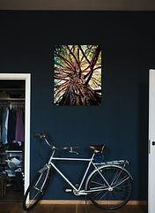 Tree I photography artwork - Urban Natural Designs