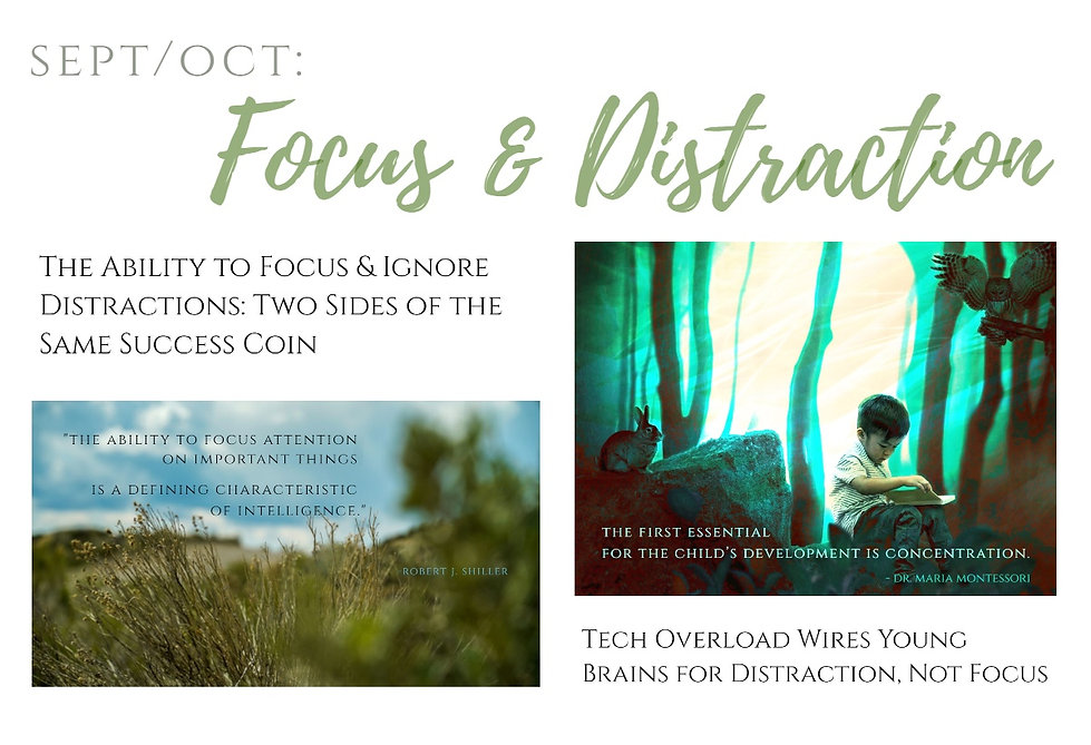 monthly topical promo - FOCUS.jpg