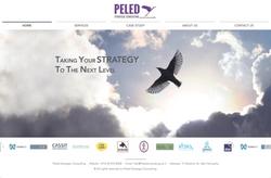 PELED strategic consulting