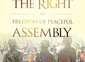 Bid to criminalise freedom of assembly unconstitutional