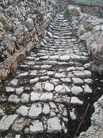 ancient path in israel.jpg