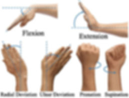 wrist ROM, anatomy, massage