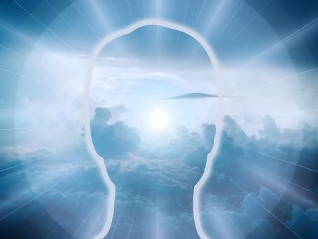 Zeit zum Schmökern? Tipps für Geist & Zirbeldrüse