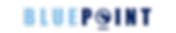 LogoBluePoint6_Mesa de trabajo 1.png