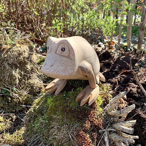The kissable frog