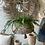 Thumbnail: Rotan hanging basket