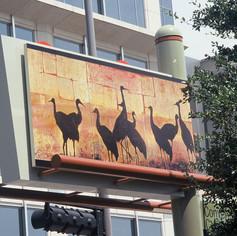 Sandhill Cranes, 2003