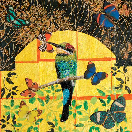 Bee Eater, 2008
