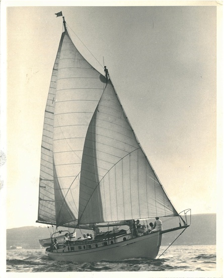 Quascilla Sailing