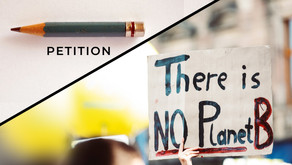 Make Bill C-12 a world-class climate law