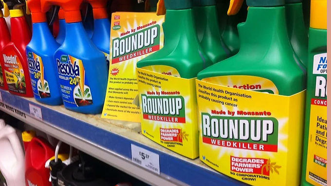 Government presses pause on glyphosate residue decision