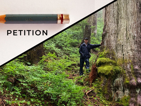 Petition to Protect Endangered Old Growth Forests