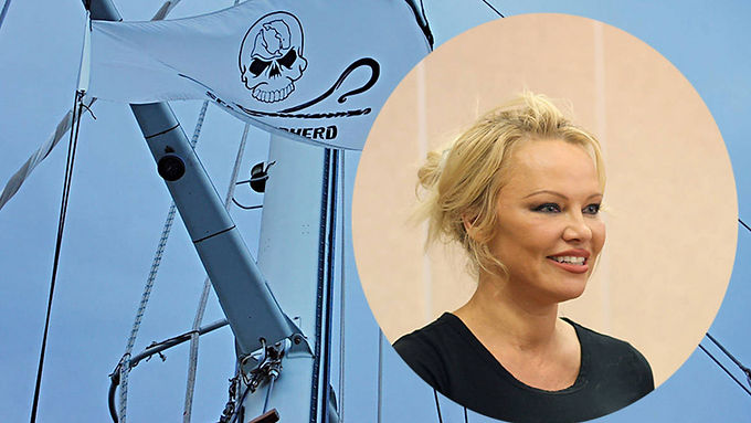 Pamela Anderson to join Sea Shepherd during protest at fish farm