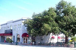 the Oak Park Inn and the Tree of Knowledge Park