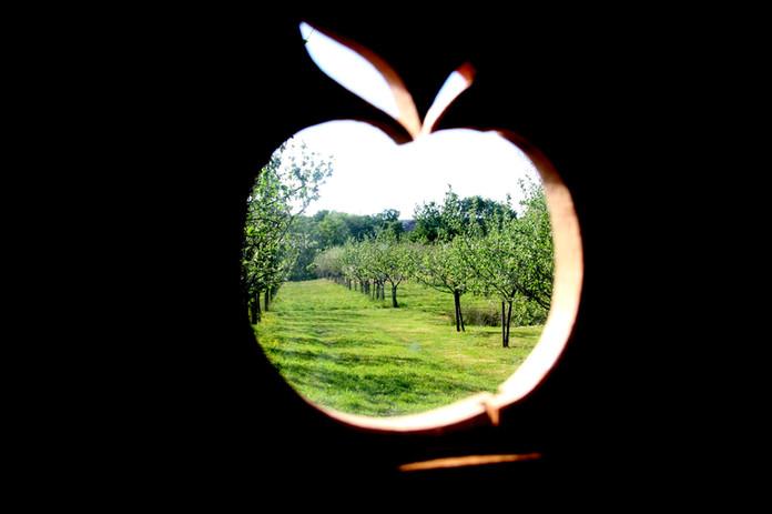 orchard wagon edited 7 .jpg