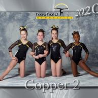 Copper 2.jpg