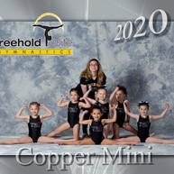 CopperGuns.jpg