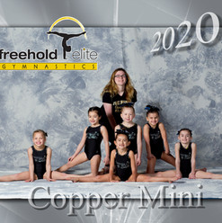 Copperminis.jpg