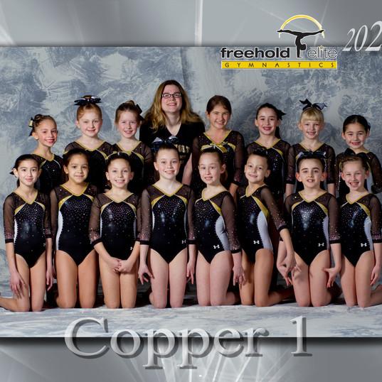 copper1.jpg