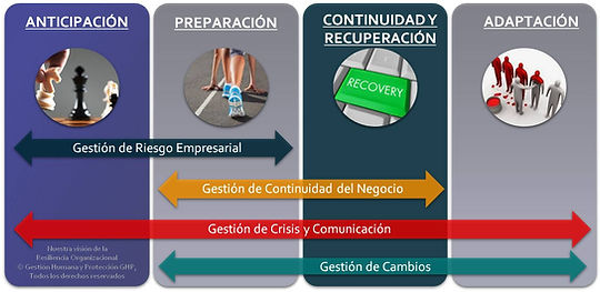 Resiliencia Organizacional.jpg