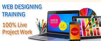 Web-Designing courses after 12