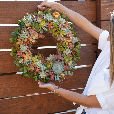 How to Create a Beautiful Living Succulent Wreath for your Home.
