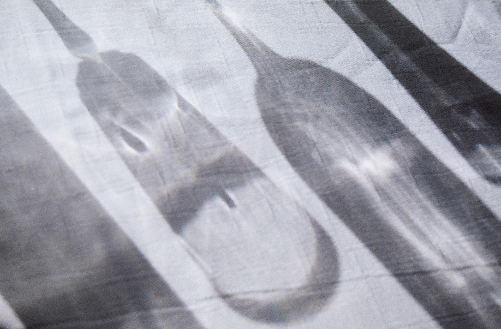 Miro Miro x Kate Dulhunty