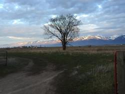Nhn Round Butte Rd
